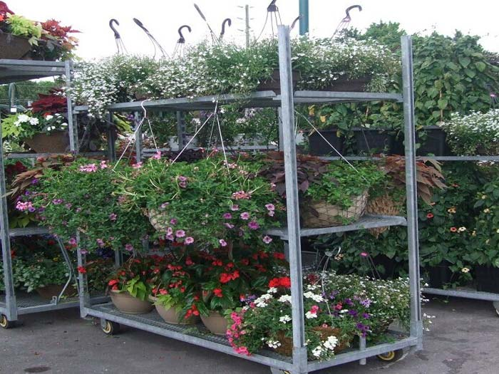 Spieth Danish Flower Trolley Plant Trolley Suppliers